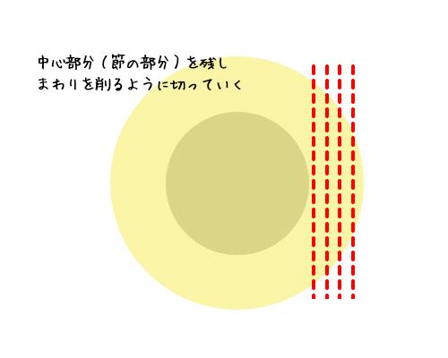 takenoko04