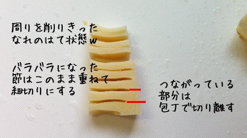 takenoko08